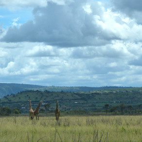 Hello from Kigali