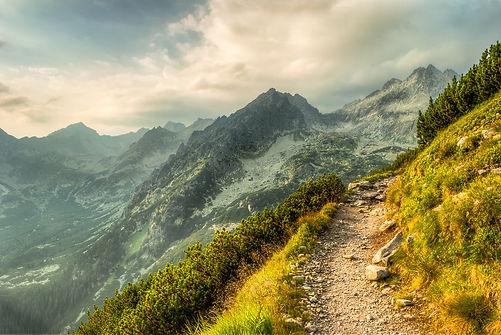 hiking-path.jpg