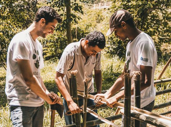 Equipe contruindo uma grade para a proteção das mudinhas