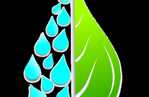 Logo do projeto Renascente