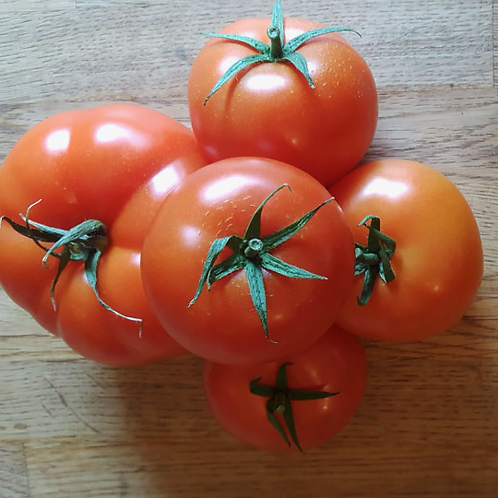 AlcheringaCottage_OrganicTomatoes_localproduce