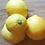 AlcheringaCottage_fresh_lemons_localproduce