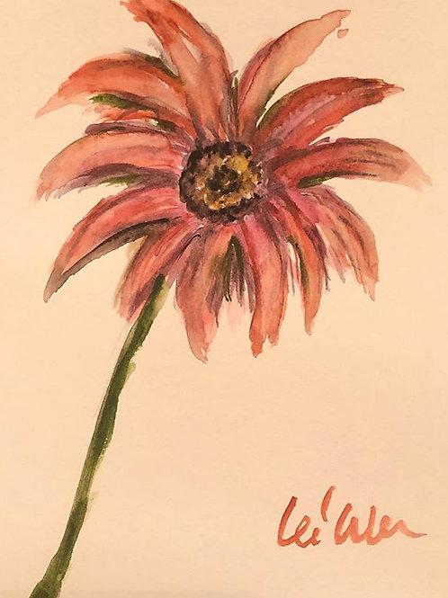 Scarlet Daisy - Watercolor by Lei  Original Watercolor Greeting Card
