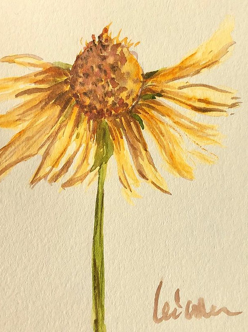 My Daisy - Watercolor by Lei Original Watercolor Greeting Card