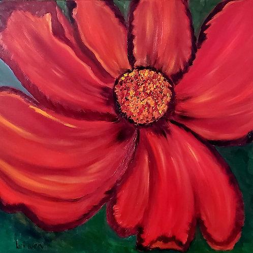 My Fiery Flower