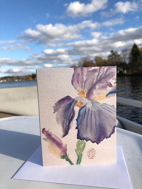 Iris Watercolor Thank you Card
