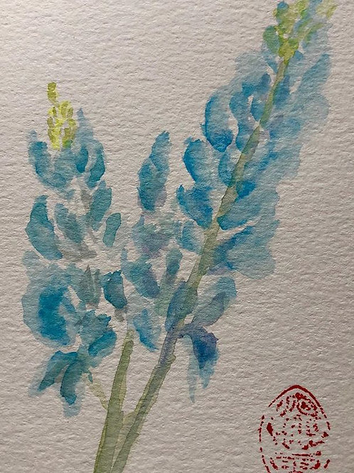 Texas Blue Bonnet - Watercolor by Lei  Original Watercolor Greeting Card