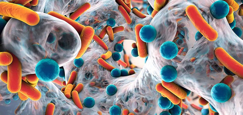resistencia-antimicrobiana_0.jpg