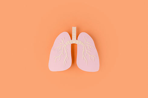paper-made-lungs-isolated-on-orange (1).