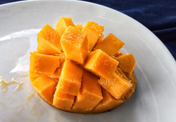 Mangoes fresh from the tree