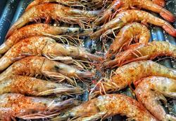 Fresh wild caught shrimp
