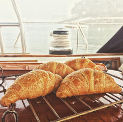 Fresh Croissants from the oven