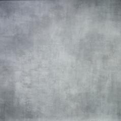 Silver Grey-H-L-21088