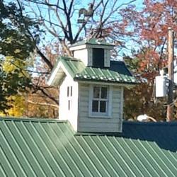 metal-roof-cupola-snow-guards_edited.jpg