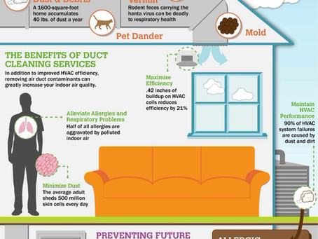 What is Hiding in Your Air Ducts