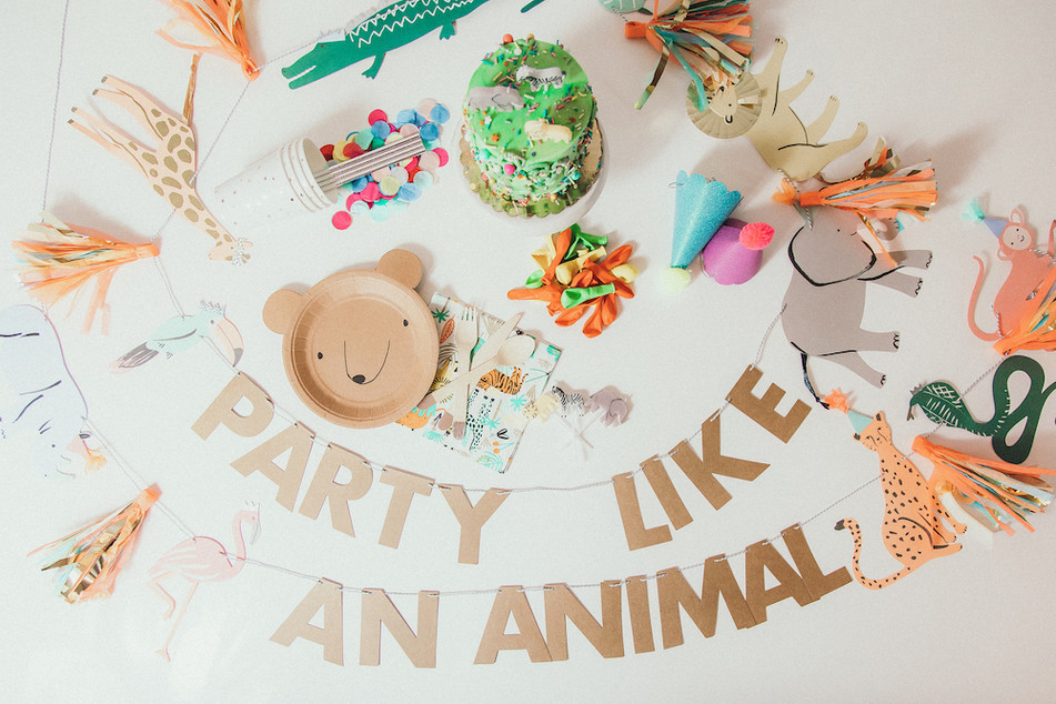 Details Chicago Party Kits Animal Lover