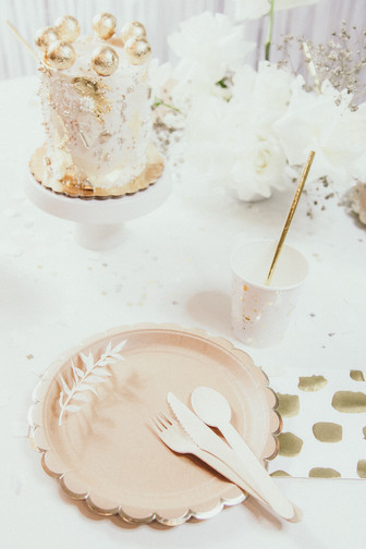 Details Chicago Party Kits Neutral Lover
