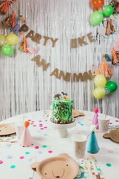 PartyKits-155.jpg