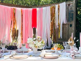 Bridal Shower Picnic Details Chicago 7.J