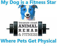 Treasure Coast Animal Rehab and Fitness.