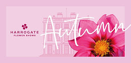 Harrogate flower show Autumn 2021.jpg