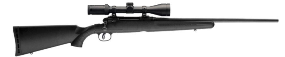Savage Axis II 270 wIN.jpg