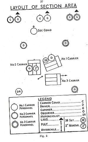 carrier10.jpg
