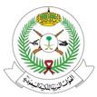 Saudi Arabia Forces.jpg