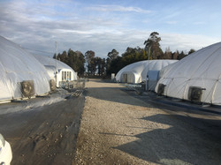 4 of the 6 domes prior to dismantle