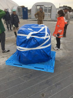 Wrapping dome for shipment
