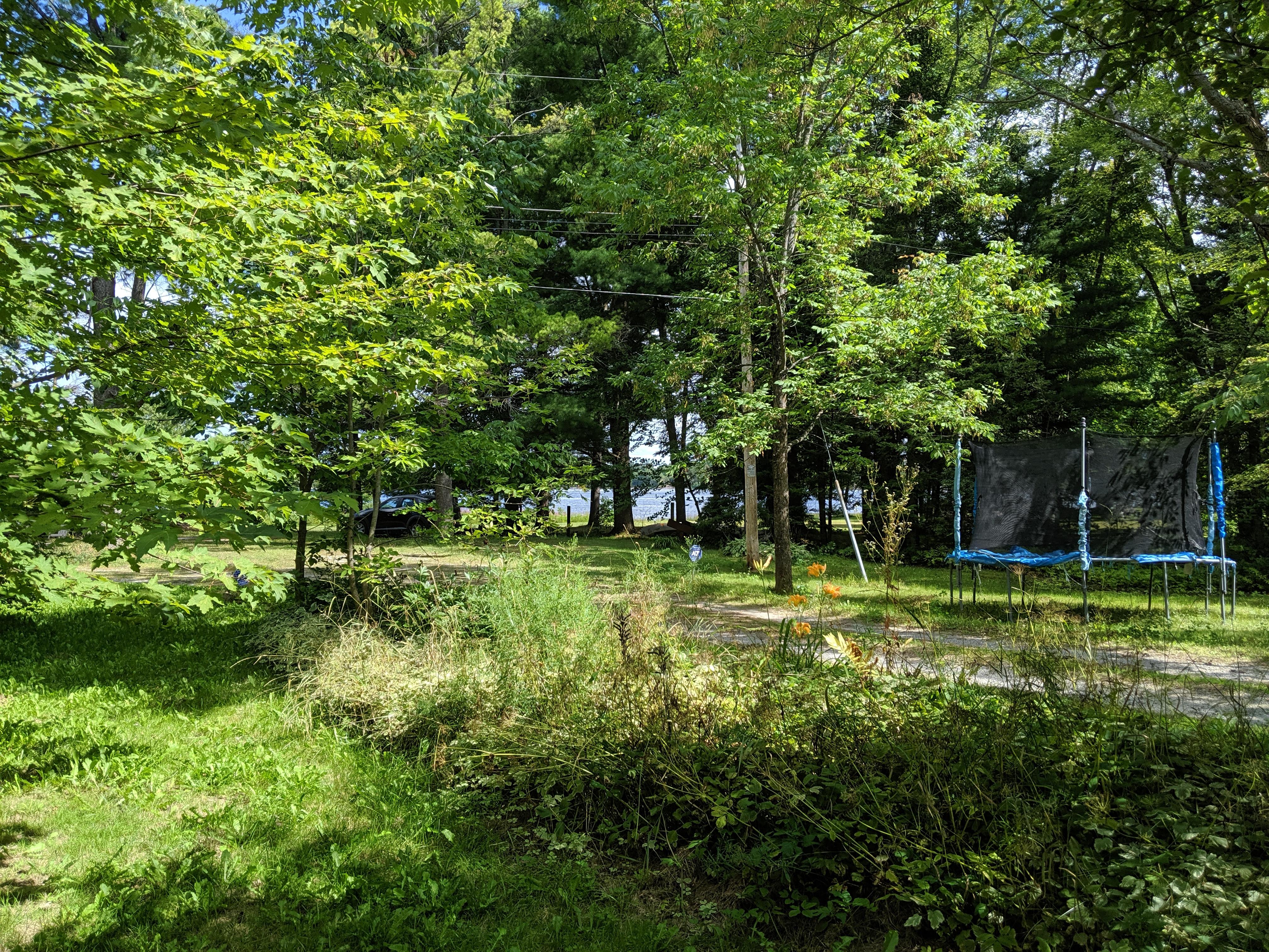 Backyard and Trampoline