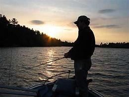 Bass, Pike, Walleye, Fishing, Angling, Trolling