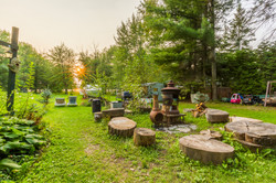 Firepit and BBQ