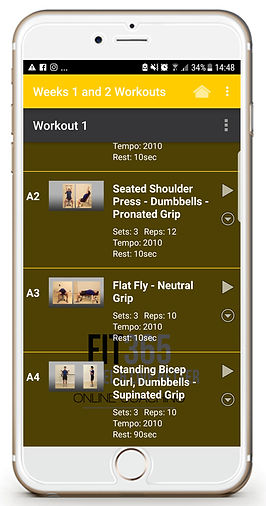 What the workout app looks like