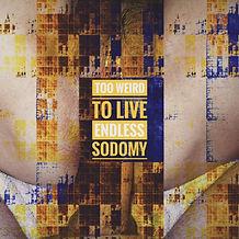 Cover Endless Sodomy.jpg
