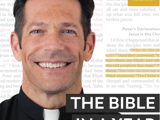 The Bible in A Year