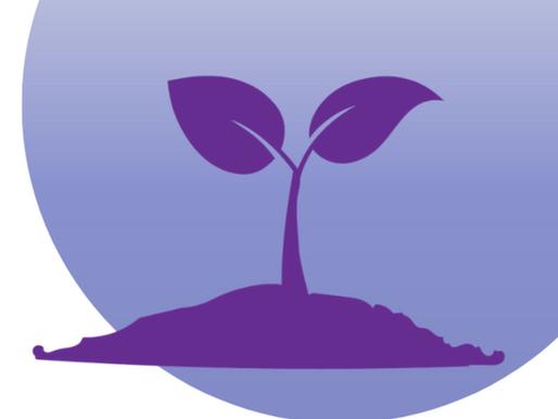 Catholic Education Week - Nurturing Hope | Diocese of Hamilton
