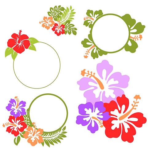 Hawaiian Frames