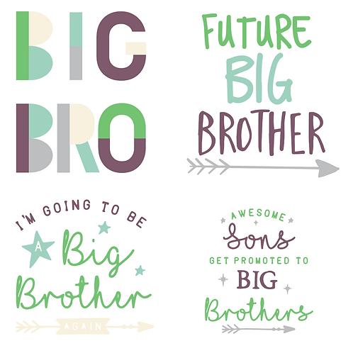 Future Big Bro