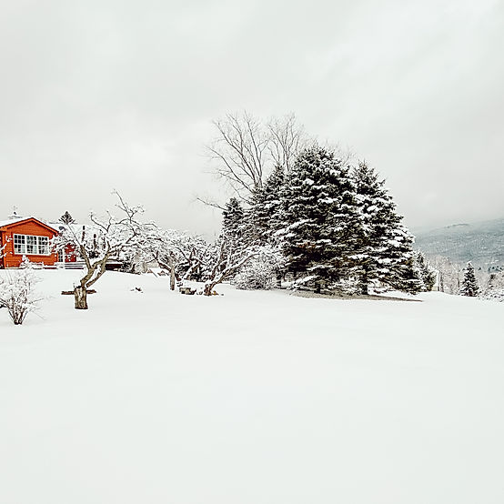 Red Vermont Winter Home