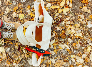Hiking and Gathering for Natural Fall Decor Elements