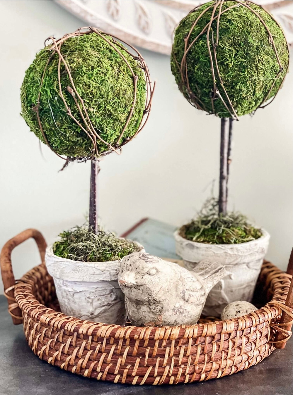 DIY Moss Ball Topiary