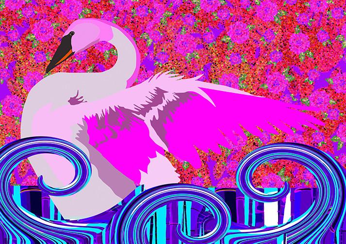 Pink Swan Lake