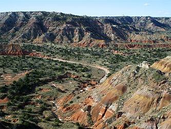 Amarillo (Palo Duro).jpg