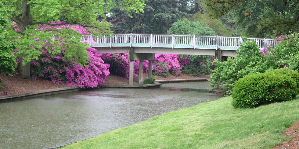 FREE Presentation: Virginia in the Spring & California Mountains & Coast, September 2, 2 p.m.