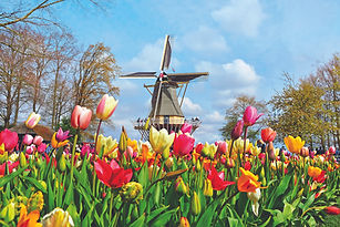 Keukenhof Gardens Windmill (from Mayflow