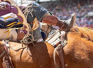 rodeo.jpg