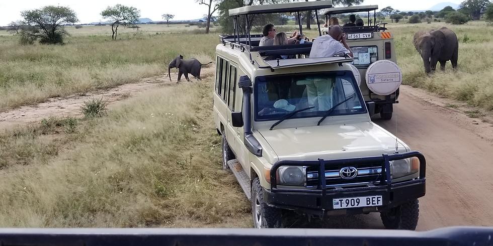 Tanzania-Serengeti Adventure FREE Presentation
