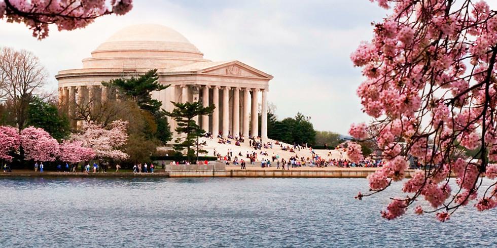 FREE Online Presentation: Cherry Blossoms in Washington D.C.