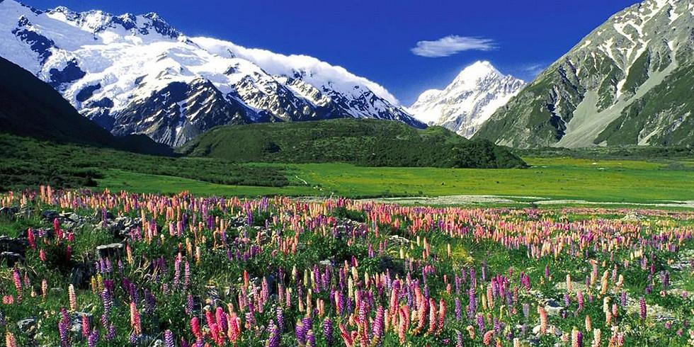 FREE Online Presentation: Alaska 2022!  Thursday Sept. 16, 2 p.m.